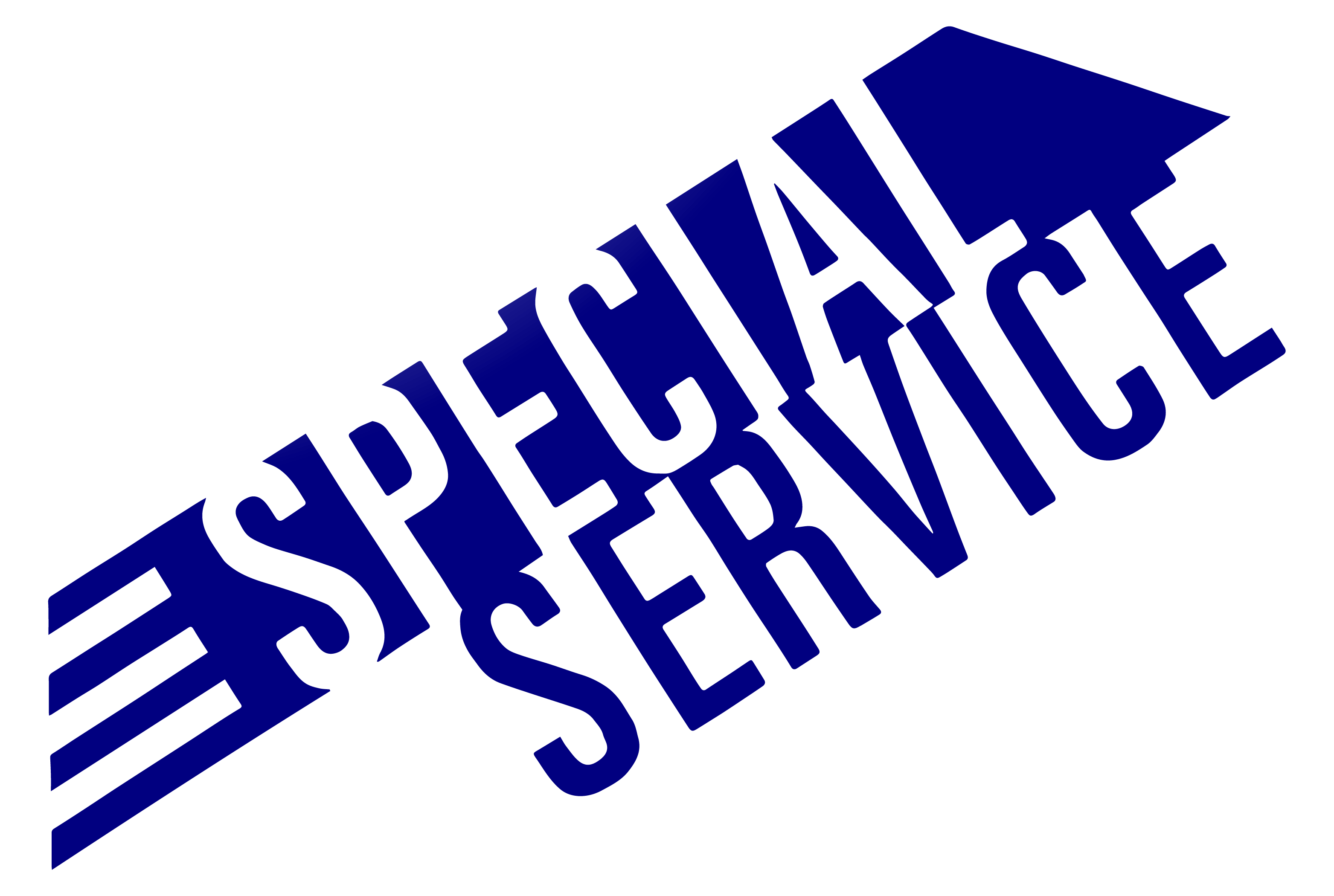 Special Service Freight